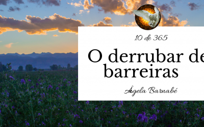 O derrubar de barreiras – 10 de 365