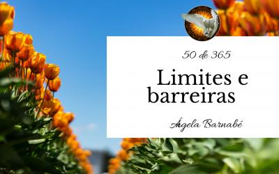 Limites e barreiras – 50 de 365