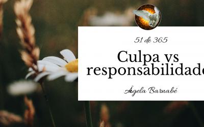 Culpa vs responsabilidade – 51 de 365