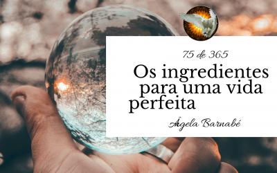 Os ingredientes para uma vida perfeita – 75 de 365