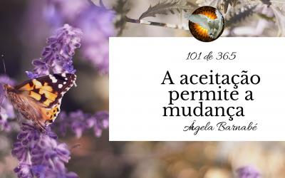 A aceitação permite a mudança – 101 de 365
