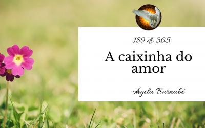 A caixinha do amor – 189 de 365