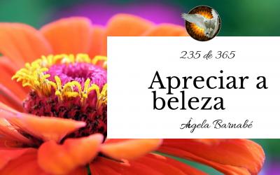 Apreciar a beleza – 235 de 365