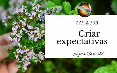 Criar expectativas – 243 de 365