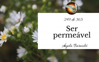 Ser permeável – 249 de 365
