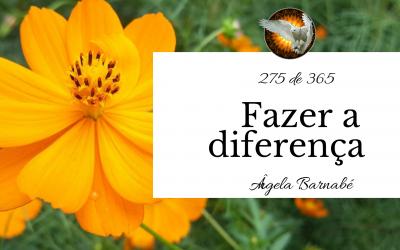 Fazer a diferença – 275 de 365