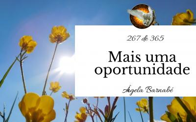 Mais uma oportunidade – 267 de 365