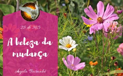 A beleza da mudança – 28 de 365